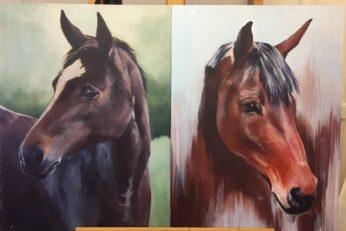 horses_commission