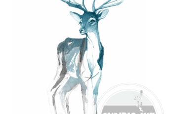 deer_ink