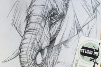 elephant_sketch