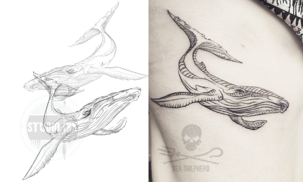 walvis tattoo donatie sea shepherd